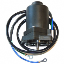 Yamaha 6D8-43880-09 Power Trim Motor